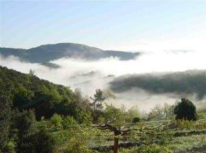 Ideale ligging in Zuid Frankrijk!
