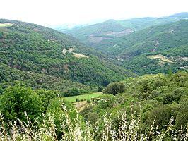 De Cevennen Hoogste top: Mont Lozere Hoogte: 1702m Onderdeel van: Centraal massief Vlakbij de:  MAS BLANC