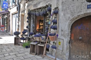 shopping-in-uzes-1
